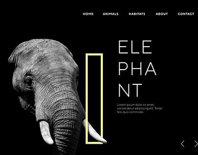Elephant Concept Practice