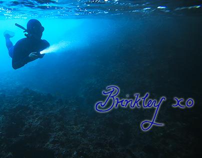 Ocean : Brinkley