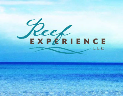 Reef Experience