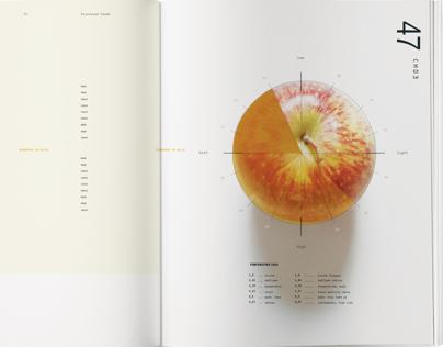 Raw Type Book