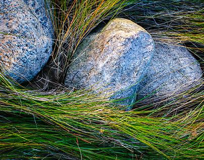 Marsh Stones of Hammonasset