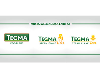 Tegma Cam Giydirme