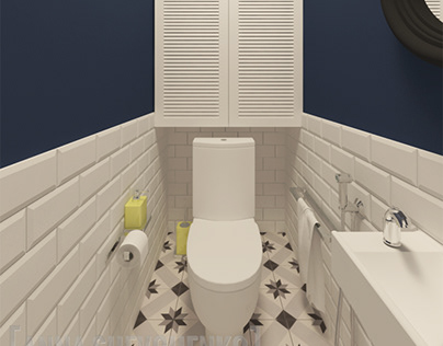 Toilet blue & white design