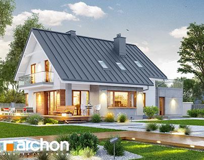 Projekt: Dom w aurorach 4