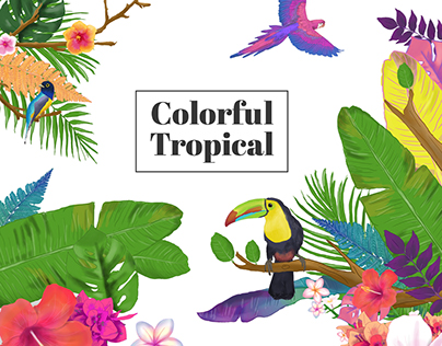 Colorful Tropical
