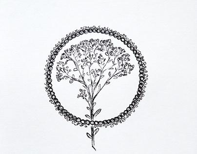 Flower(tattoo)illustrations