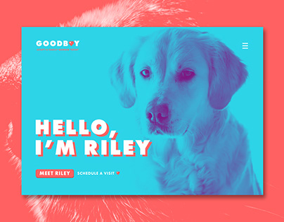 Goodboy - Landing page