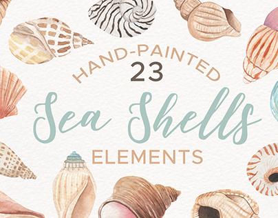 Sea Shells Watercolor Clipart Set Elements