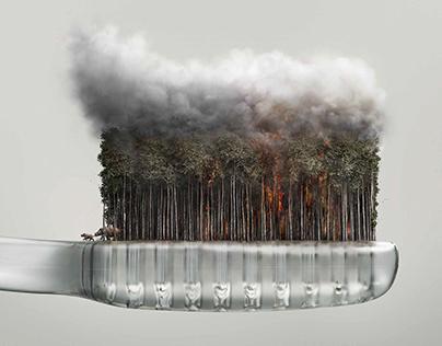 WWF Haze Campaign