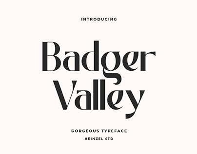 FREE | Badger Valley Typeface