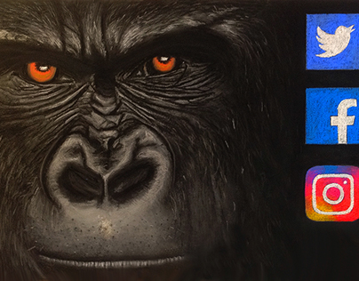 This gorilla means business
