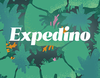 Packaging for board game | Expedino