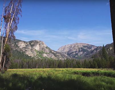 Beautifully Wild [Video]