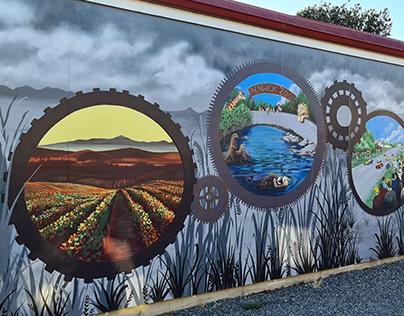 Murals by Tui Johnson