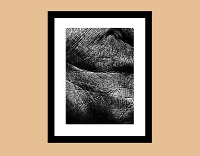 Skin – Prints
