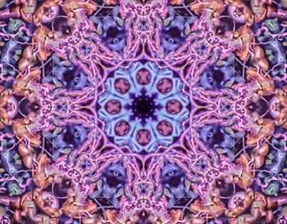 Kaleidoscopics / Mandalas