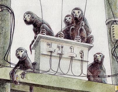 Monos churucos
