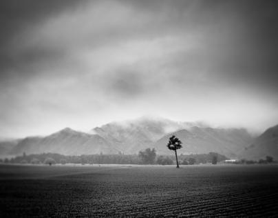 Black & White Series - pt. II