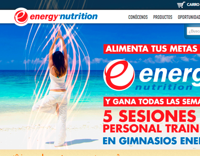 Energy Nutrition: Sitio web