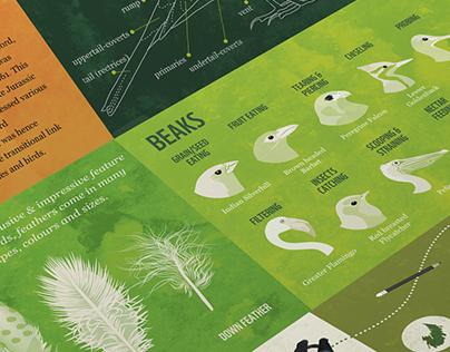 WWF EcoTrails