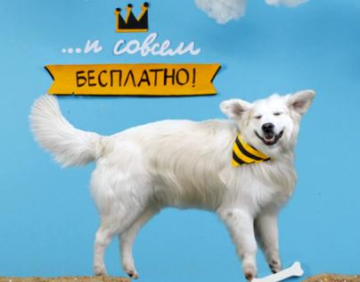 Paper lettering for Beeline video (2013)
