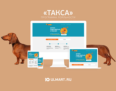 "2019 ""TAXA"" Ulmart Loyalty Programm UX Optimizing"