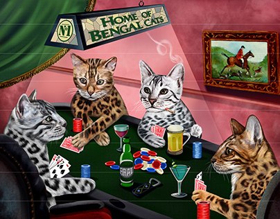 Poker Bengal cats
