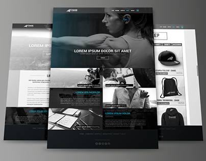 Website project - Chase