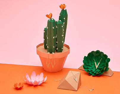 Galeiras — Cactus