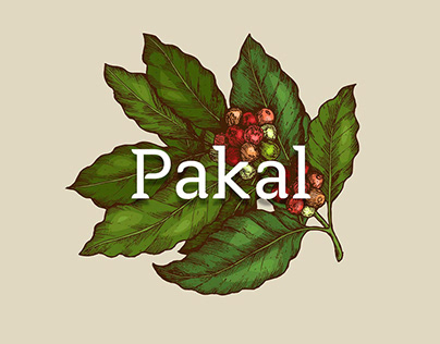 Pakal Coffee
