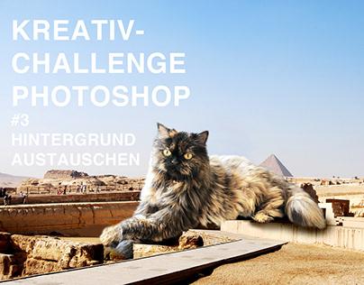 KREATIV-CHALLENGE IN PHOTOSHOP #3