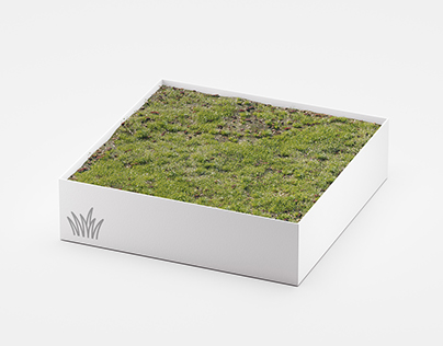 Sale: Meadow Asset for 3ds Max