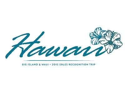 Graphic Design  Team Vision Marketing  Honolulu Hawaii