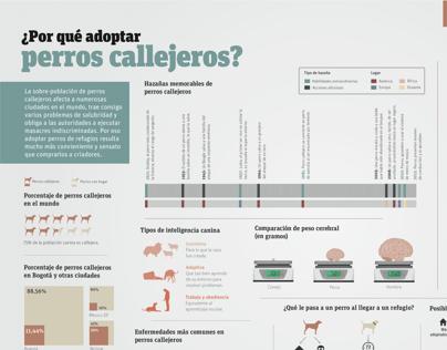 ¿Por qué adoptar perros callejeros?