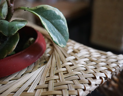 Echostream, bamboo woven products