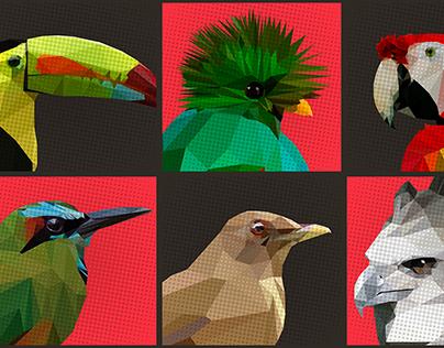 Low poly aves nacionales