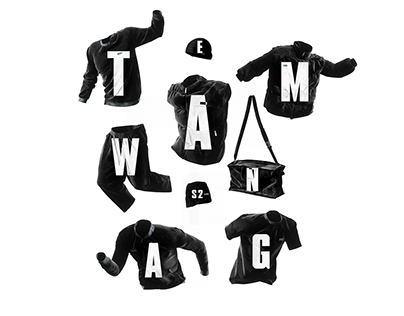 Team Wang | Invisible Man II