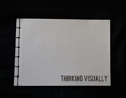 Thinking Visually Book