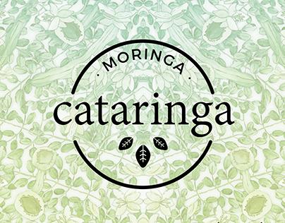 Cataringa (Branding + Identity)