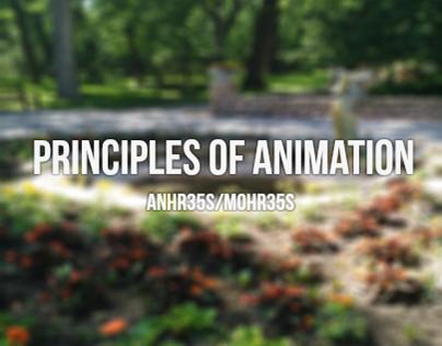 Principles of Animation Unit