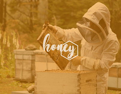 Logo design for a Cooperative honey