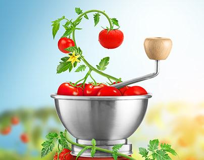 tomato sauce adv