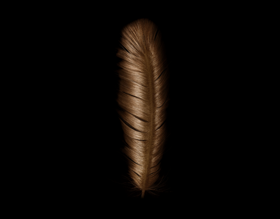 Pantene. Feather Light Hair