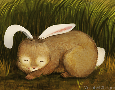 A Sleepy Bunny | Personal Project