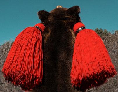 The Bear Dance