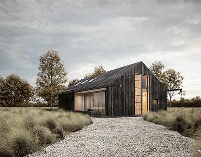 black modern barn SK-ARCHITEKCI