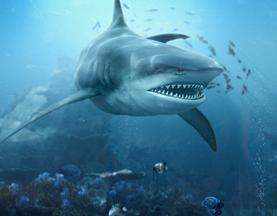 Discovery Channel + CREST   Shark Week