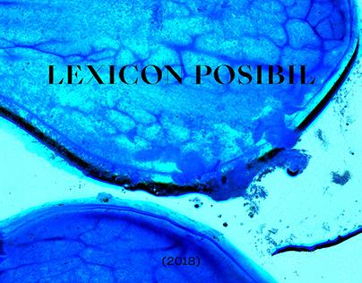 Lexicon Posibil (2018) / MA degree