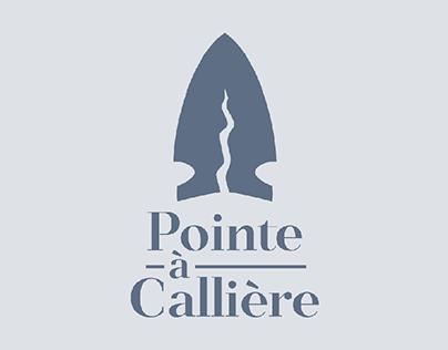 Projet Pointe-à-Callière 2019