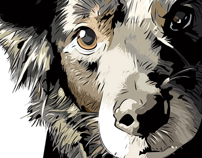 """PET PORTRAIT COMMISSION - """"TUX"""" The Wonder Dog"""